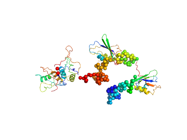 Polypyrimidine tract-binding protein 1 BUNCH model