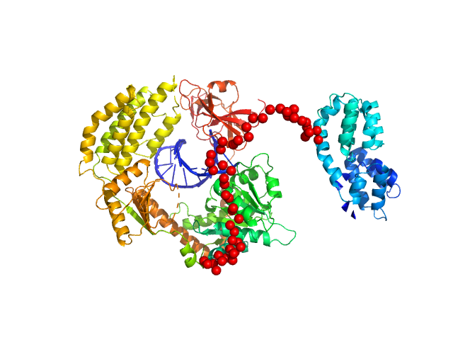 Probable ATP-dependent RNA helicase DDX58 5´ppp 8mer hairpin dsRNA EOM/RANCH model