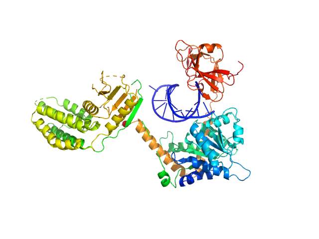 Probable ATP-dependent RNA helicase DDX58 (without CARDs) 5´ppp 8mer hairpin dsRNA EOM/RANCH model