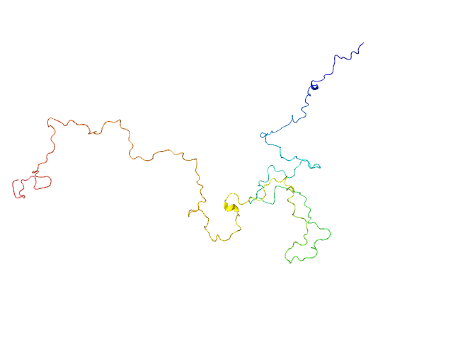 RNase E 603-850 EOM/RANCH model