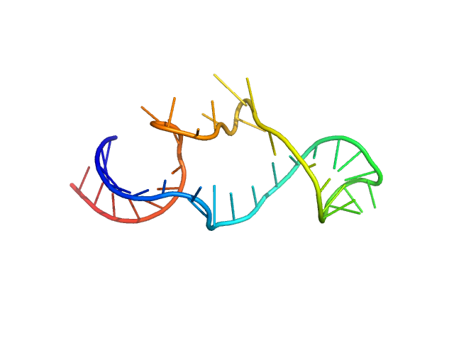 Arginyl transfer RNA PYMOL model