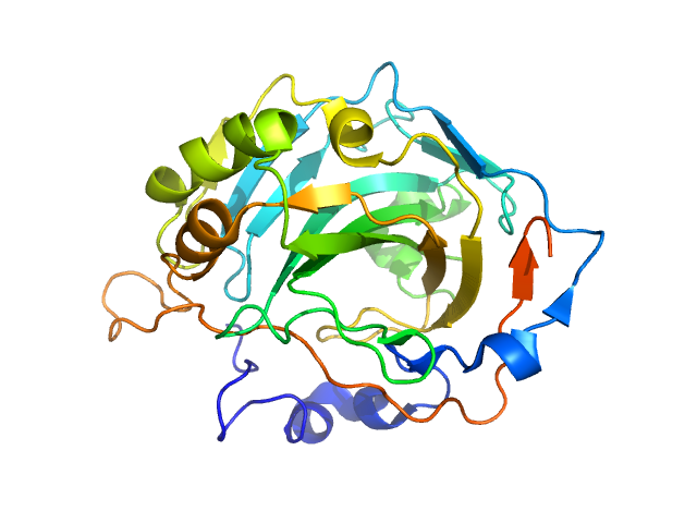 Carbonic anhydrase 2 PDB model